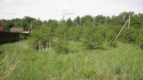 Для чего нужно межевание земельного участка и как его оформить?